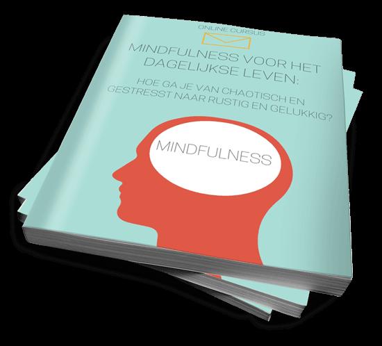 Review: Mindfulness voor het dagelijkse leven (Rolf van Baalen)