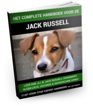 Complete Handboek Voor De Jack Russell